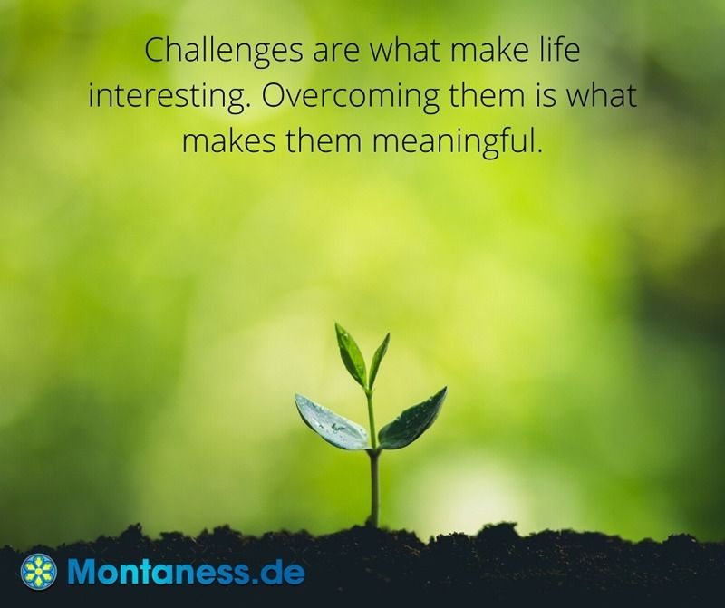 109-Challenges are what make life interesting