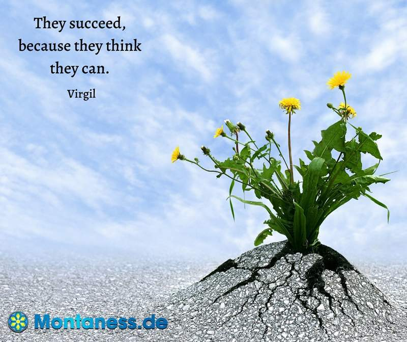 228-They succeed because they think they can