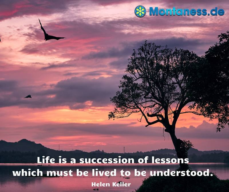 264-Life is a succession of lessons