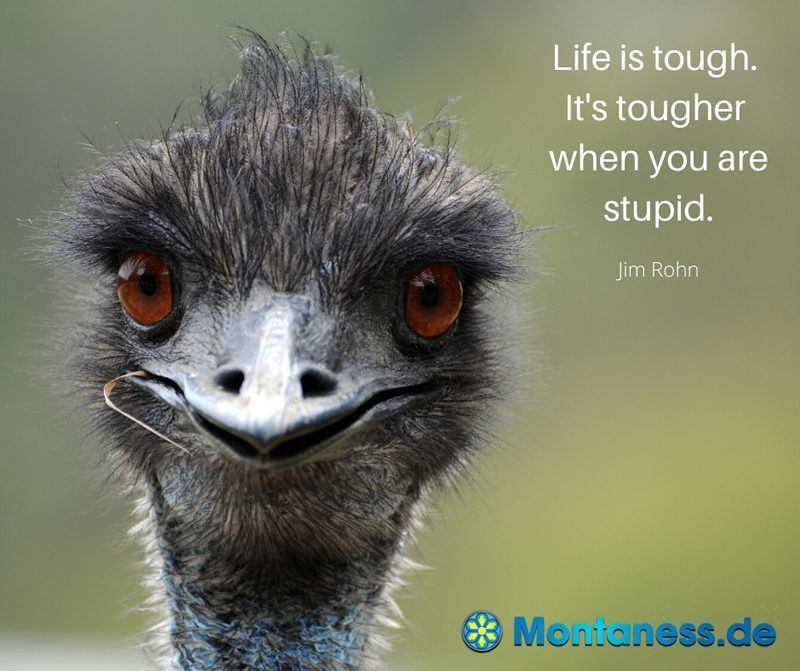 279-Life is tough its tougher when you are stupid