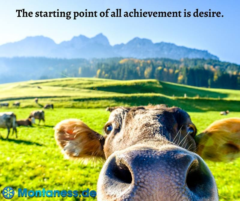 338-The starting point of all achievement